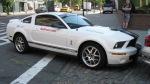Bullrun Shelby GT500